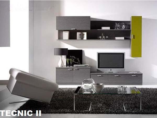 TECNIC-II
