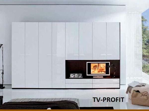 TV-PROFIT